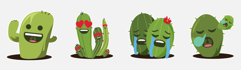 For Cacti and Succulents Lovers!